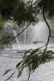 2.  An aeration fountain on the lake.