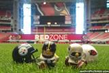 NFL Huddles: Pittsburgh at Arizona at Univ. of Phoenix Stadium