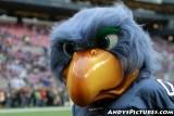 Seattle Seahawks mascot
