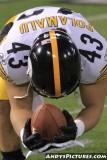 Pittsburgh Steelers safety Troy Polamalu