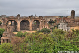 Basilica of Constantine in the Roman Forum