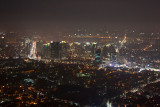 The view from N Seoul Tower