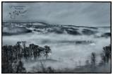 Valley Fog_3693_HDR.jpg