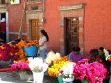 cempazuchiles (marigolds) and barro de obispo (cockscomb)