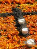 dirt cross & marigold petals