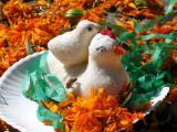 sugar chicken & chick