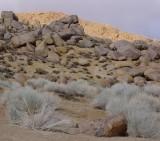 Bishop and Buttermilk Boulders/hills March 18 2012