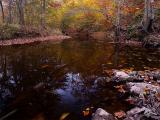 wEF Creek2.jpg