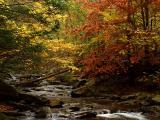 wCatoctin Creek7.jpg