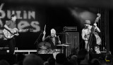 Vibrotones - moulin blues 2011