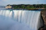 Niagara Falls / Magee Marsh - 2012