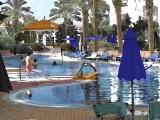 Stylized Sports Pool