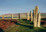 Orkney 2011