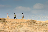 Amidst former settlement land - Gaza