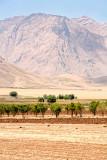 Rural Iran