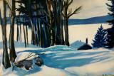 snowed-in-half-moon-lake-nh-debra-bretton-robinson.jpg