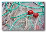 31 HL_cam_MG_5545 filets floteurs rouges.jpg