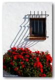 32 HL_cam__MG_5482 roses rouges mur blanc.jpg