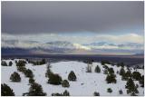 White Mountains California