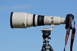Canon EF 800mm f5.6L IS USM lens