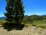 Near Luther Pass 2.jpg