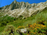 Bloody Mountain.jpg