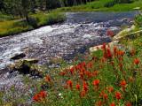 Paintbrush and Rock Creek.jpg