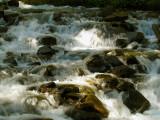 Coldwater Creek 3.jpg