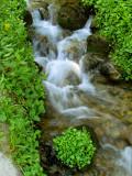 Unnamed Creek 1.jpg