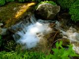 Unnamed Creek 2.jpg