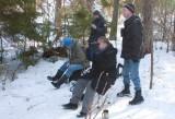 Siberian Jay in Uppland