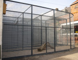 the new 4  parrot cages under construction :-)