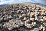Death Valley & Rhyolite