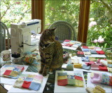 sewingcat1.jpg