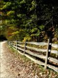 Mt. Vernon - Autumn
