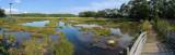 Panorama test - salt marsh