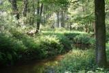 Het riviertje de AA stroomt door volkomen ongerept natuurgebied.