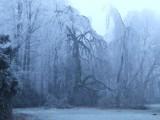 Winter in de tuin van Kasteel Geldrop