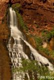 Vasey's Paradise Waterfall  1
