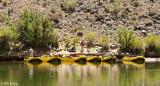 Colorado River Rafting Trip  10