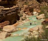 Havasu Canyon Creek  3