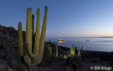 National Geographic Sea Bird,  Isla Santa Catalina   1