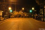 Duval St and Caroline St, debris pile