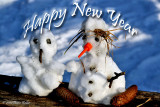 Happy New Year to all Pbasers!