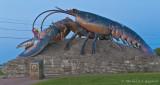 Le célèbre homard géant