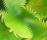 Wavy Lab Succulent