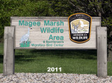 magee_marsh_wildlife_area_port_clinton_ohio_2011