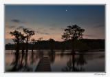 Moon Over Caddo Lake-2
