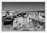 Bisti Badlands - B&W
