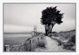 High Winds and Fog over Golden Gate Bridge